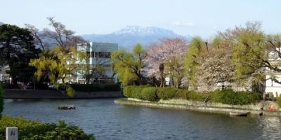市内から望む石鎚山
